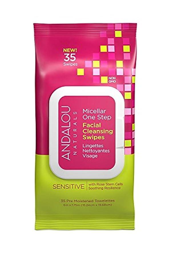 化学名義で質素なオーガニック ボタニカル クレンジングシート 洗顔シート ナチュラル フルーツ幹細胞 「 Sミセラスワイプ 35枚入り 」 ANDALOU naturals アンダルー ナチュラルズ
