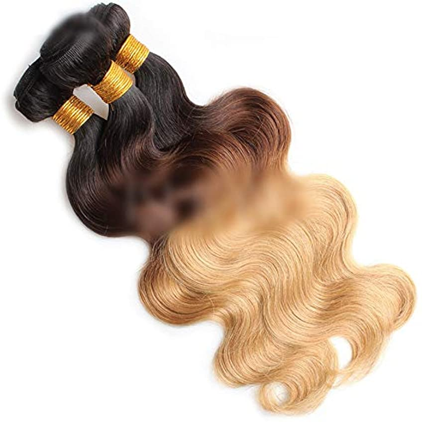 影響を受けやすいですシュート事務所HOHYLLYA 実体波オンブルヘアバンドルナチュラルヘアエクステンション横糸 - 1B / 4/27#金髪3トーンカラー(100g / 1バンドル、10インチ-26インチ)合成髪レースかつらロールプレイングウィッグロング...