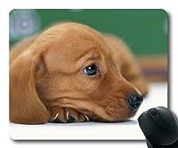ゲーミングマウスパッド、かわいいかわいい犬の犬の無料、正確な縫い合わせ、耐久マウスパッド