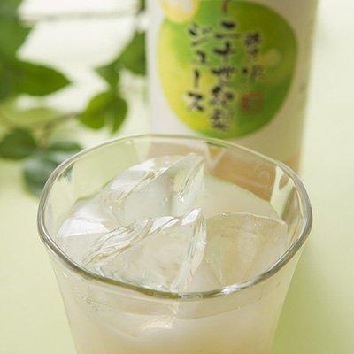 鳥取県産 贅沢二十世紀梨ジュースセット アグリネット琴浦 鳥取県 720ml×2