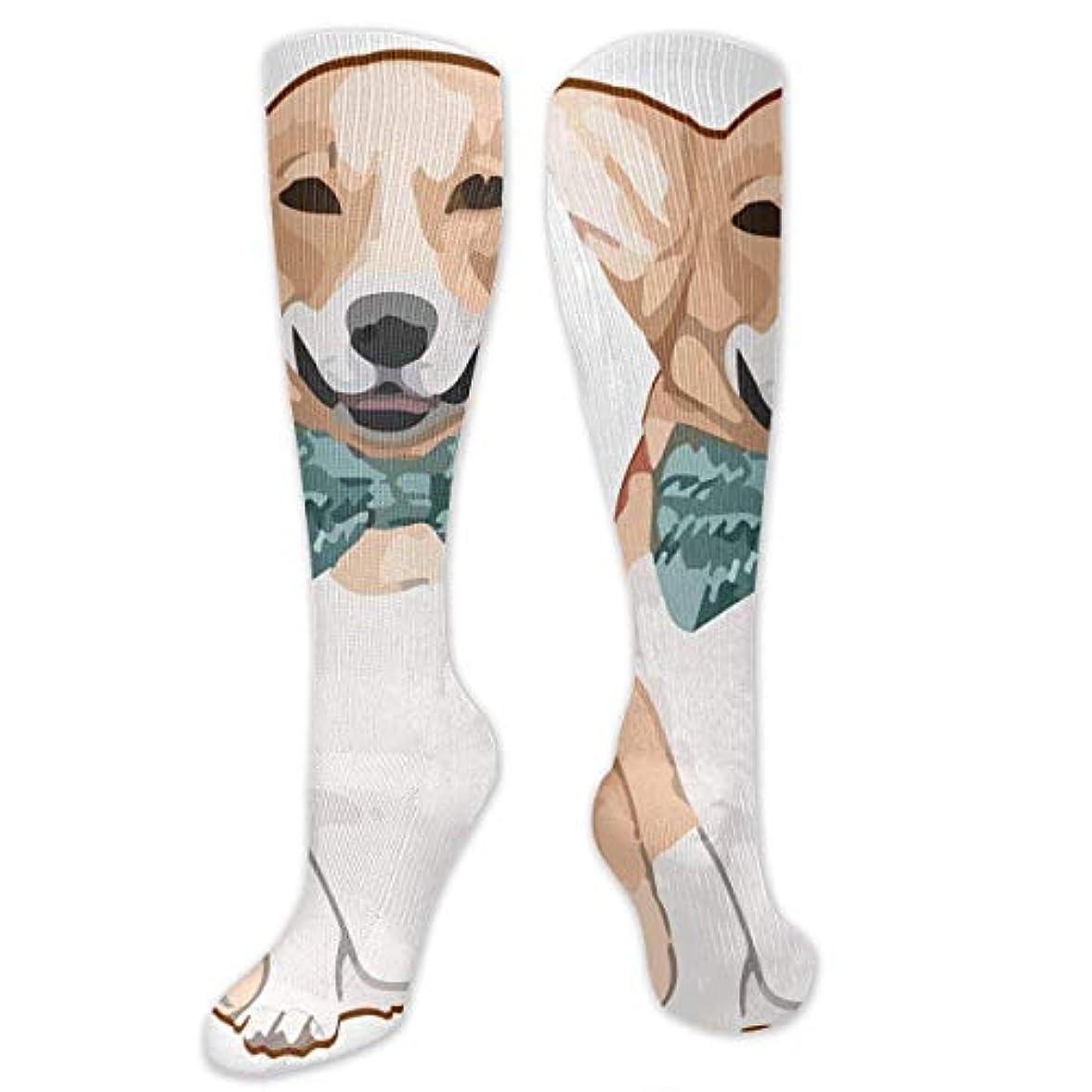 むちゃくちゃ量まぶしさQRRIYノベルティデザインクルーソックス、コーギー犬8、クリスマス休暇クレイジー楽しいカラフルなファンシーソックス、冬暖かいストレッチクルーソックス