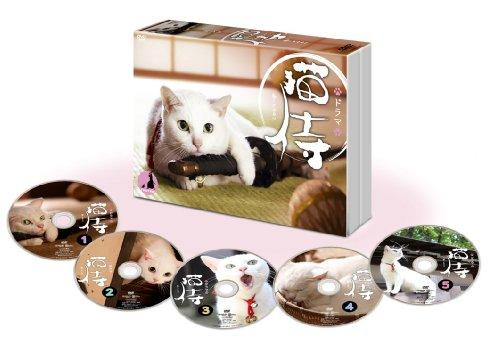 ドラマ「 猫侍 」DVD-BOXの詳細を見る