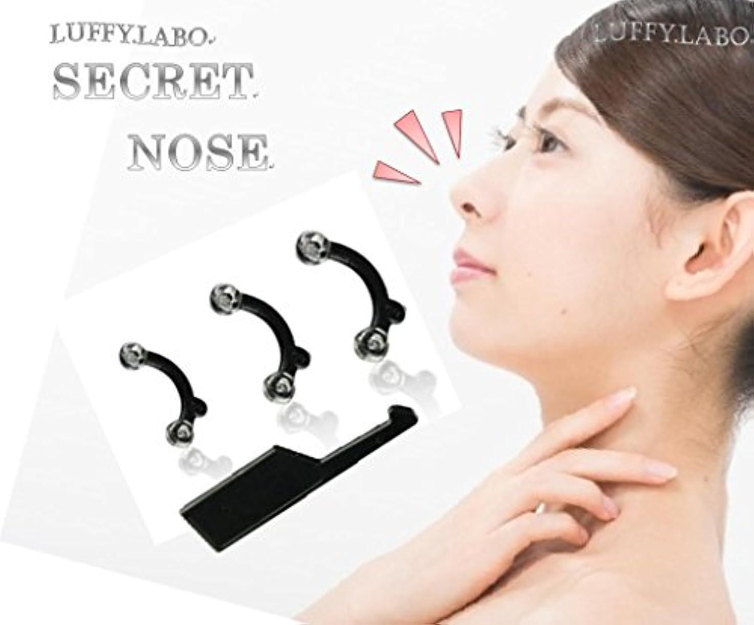 キャロラインモーター仲間、同僚鼻プチ シリコン プチ整形 痛くない 鼻が高くなる 矯正器具 セット (Mサイズ(単品))