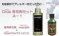 CroixスカルプエッセンスA-1セット Croix育毛剤セットA-1(1ヶ月分)