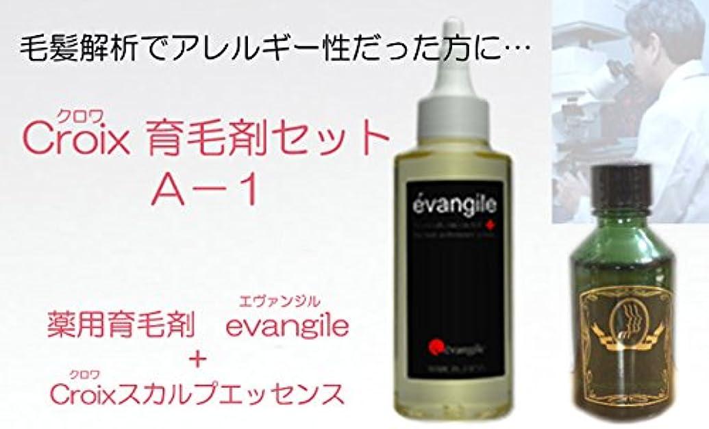 区裸マーガレットミッチェルCroixスカルプエッセンスA-1セット Croix育毛剤セットA-1(1ヶ月分)