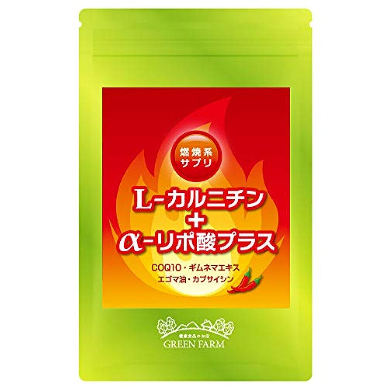 過剰桃ソフィーL-カルニチン+アルファリポ酸プラス アミノ酸サプリ(オメガ3系脂肪酸 エゴマ油?COQ10配合)国内製造 1日2粒目安 約30日分