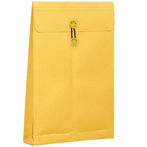 高春堂 角2マチ紐付保存袋カーデックス177kg 134 00071653【まとめ買い10枚セット】