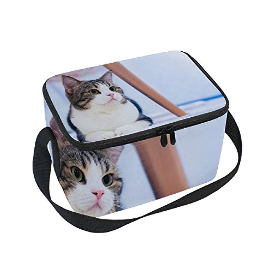 大量若いスリッパクーラーバッグ クーラーボックス ソフトクーラ 冷蔵ボックス キャンプ用品  かわいい猫柄 保冷保温 大容量 肩掛け お花見 アウトドア