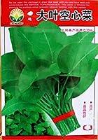 SEEDS PLAT会社-の50pcs /オリジナルパック大型の葉の葉、ヨウサイForsk種子野菜の種子盆栽植物DIYの家庭菜園