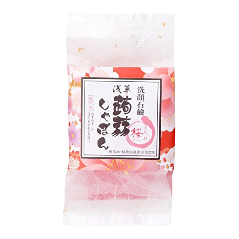 錆び導入する長くする浅草蒟蒻しゃぼん浅草 枝垂桜(しだれさくら)