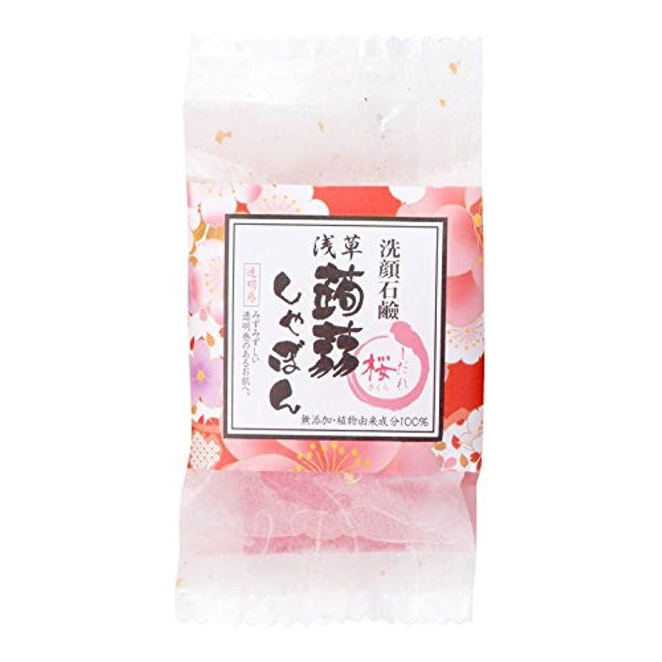 つづり空のさまよう浅草蒟蒻しゃぼん浅草 枝垂桜(しだれさくら)