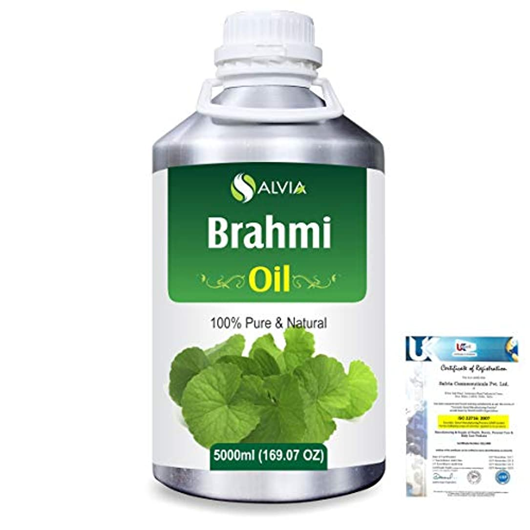ホイッスル珍しい乱すBrahmi (bacopa monniera) 100% Natural Pure Oil 5000ml/169fl.oz.