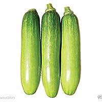 """20個の韓国サワースクワッシュ種子""""Meot Jaeng I Ae""""、 - ズッキーニのスカッシュに似ています"""