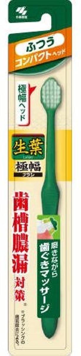 酔った含める階段生葉極幅ブラシ コンパクト ふつう × 3個セット