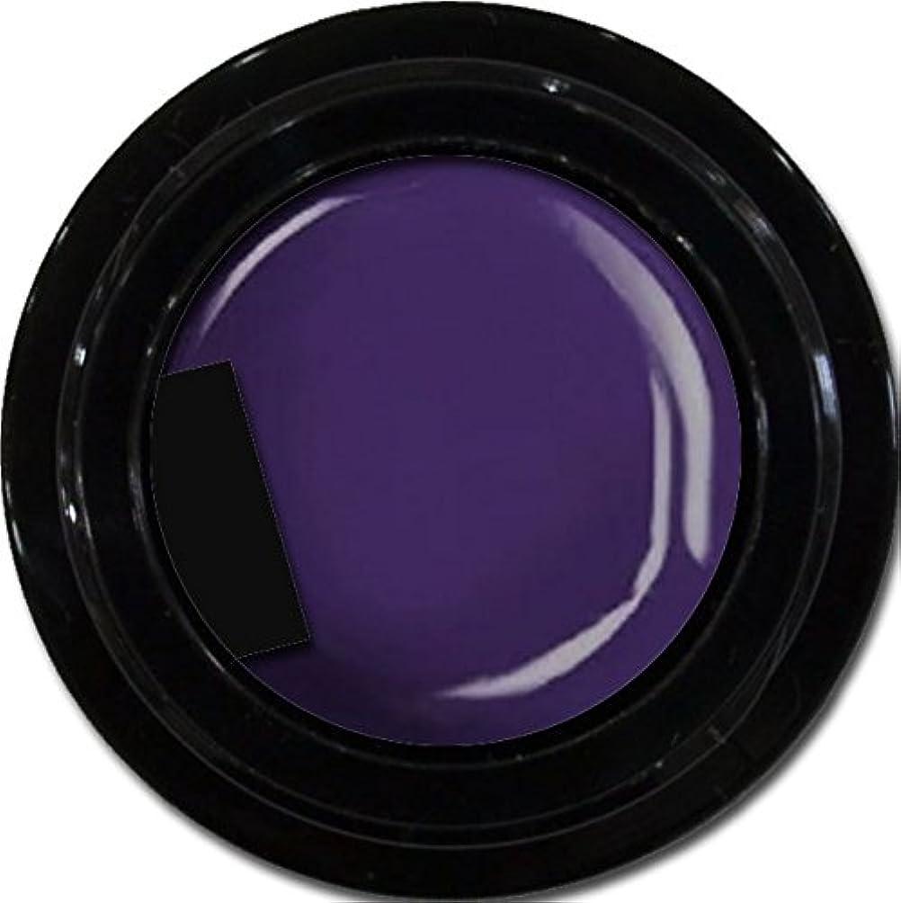 しなやかダーリン壮大カラージェル enchant color gel M511 LavenderNights 3g/ マットカラージェル M511 ラベンダーナイツ 3グラム