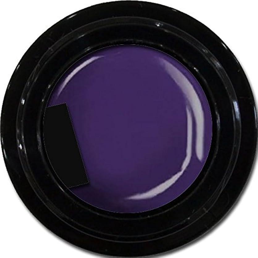 カラージェル enchant color gel M511 LavenderNights 3g/ マットカラージェル M511 ラベンダーナイツ 3グラム