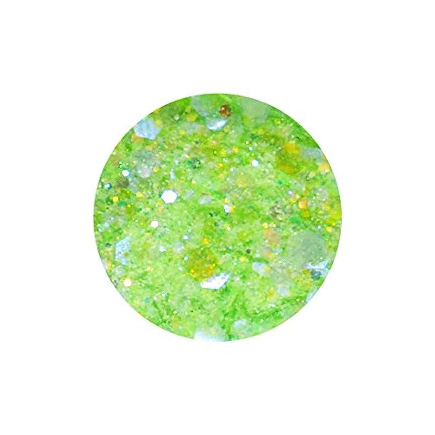 着陸第二音irogel イロジェル 超微粒子マジカルグリッター + ホログラム 【ライトグリーンMIX】