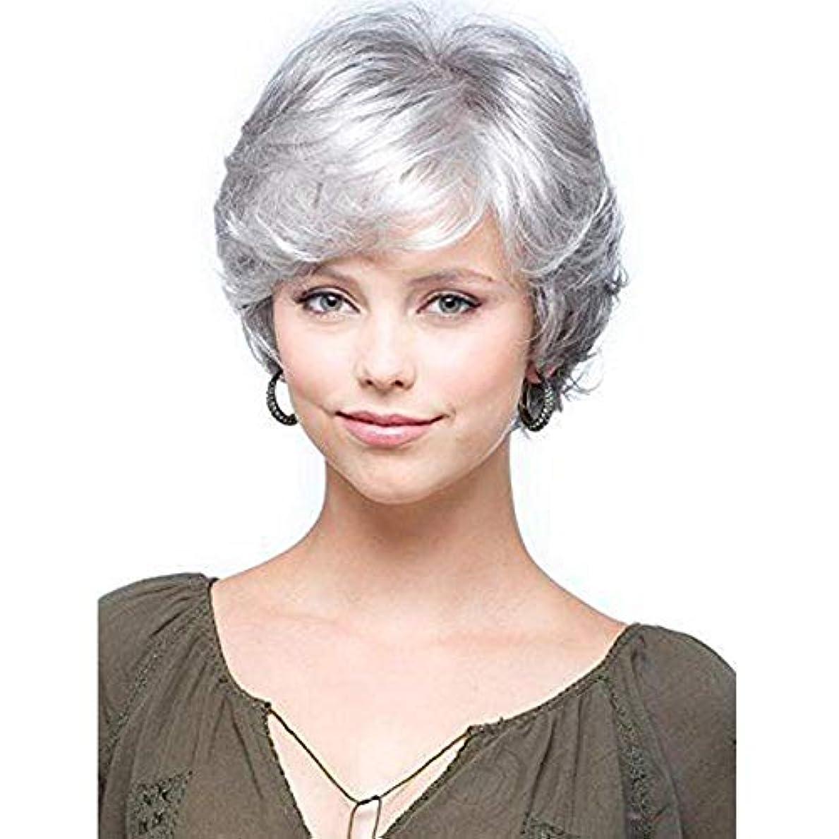 赤外線会計バーゲンWASAIO 女性の短い巻き毛のかつら古い中年女性のシルバーグレーの短い髪 (色 : グレー)