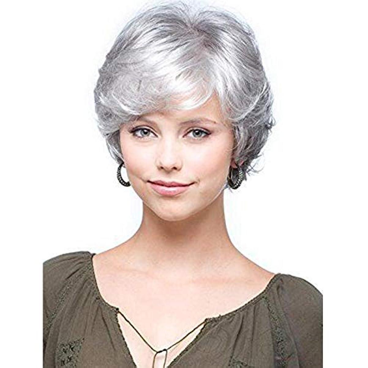 所属展望台細いWASAIO 女性の短い巻き毛のかつら古い中年女性のシルバーグレーの短い髪 (色 : グレー)