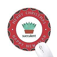 サボテンの鉢植えの緑の植物の多肉植物 円形滑りゴムのクリスマスマウスパッド
