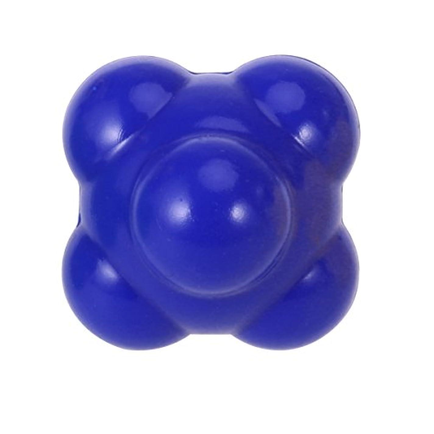 習熟度瞑想汚すROSENICE 敏捷性ボール58mm優れたハンドアイ配位の開発(ブルー)