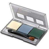 ウェザリングマスター Eセット tm098 ( イエロー?グレイ?グリーン ) 3色セット AFVモデル 手軽にドライブラシが可能