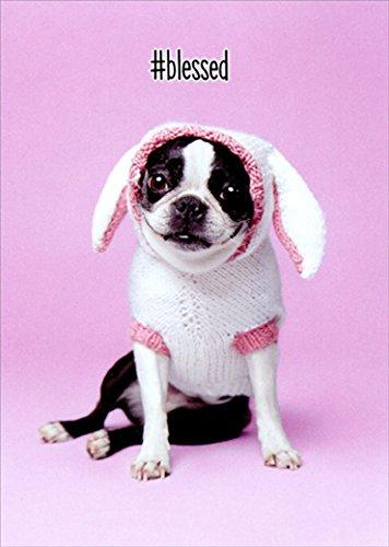 犬Easter Bunny Cuteジャックラッセル・テリアイースターカード