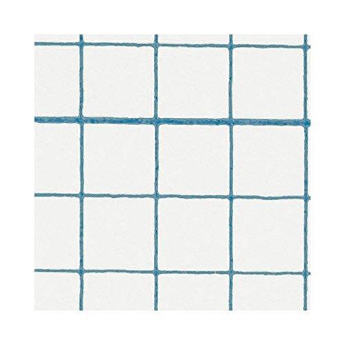 壁紙 のり付き クロス サンゲツ リザーブ Pick Up Wallpaper 1m単位 【CC-RE2417】 JQ5の写真