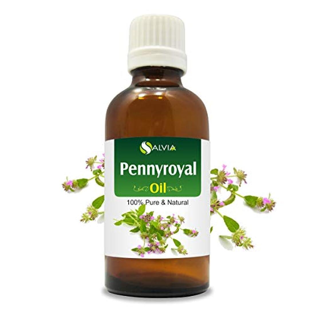 強化する面白いしょっぱいPennyroyal Oil (Mentha pulegium) 100% Natural Pure Undiluted Uncut Essential Oil 100ML