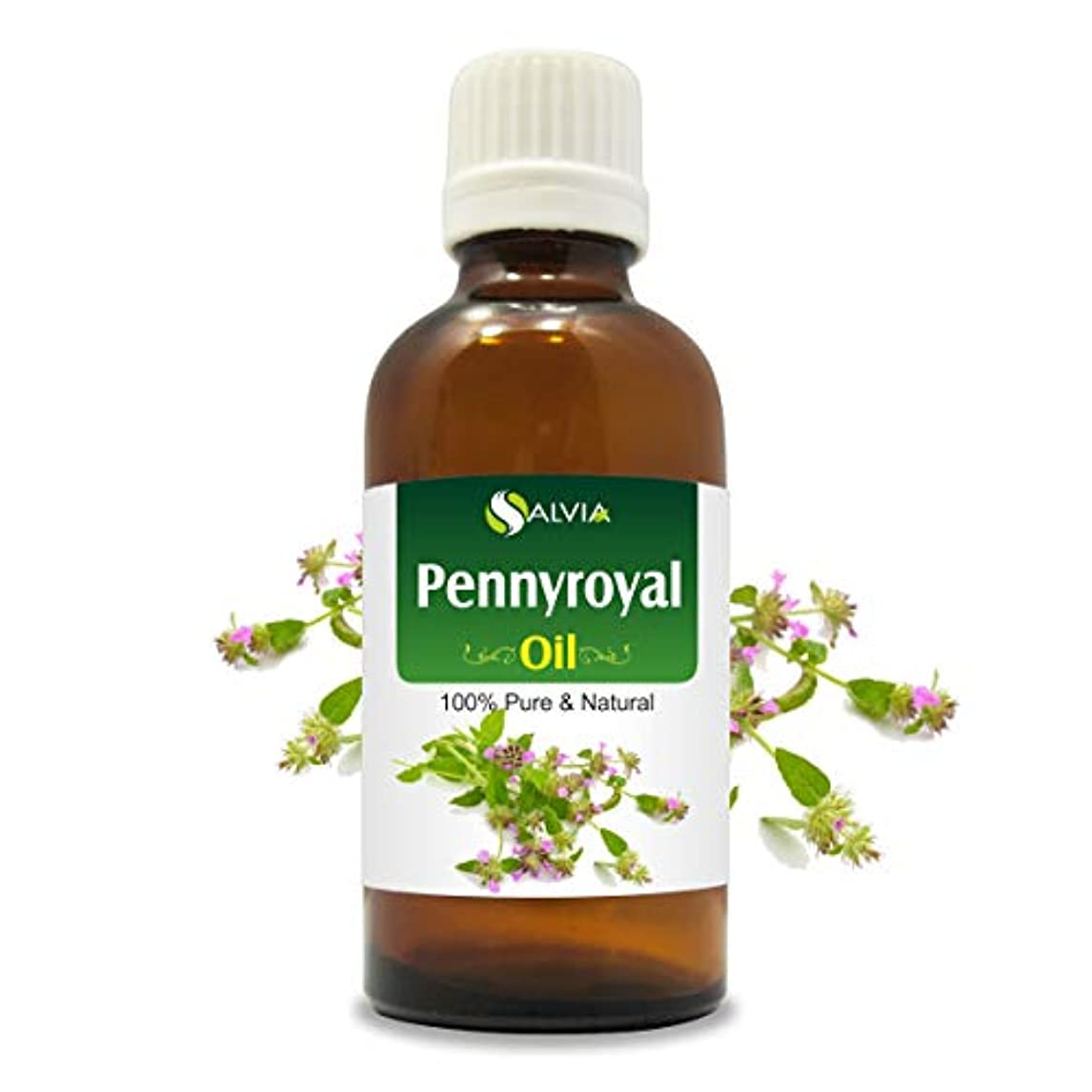 アームストロング羨望政治家のPennyroyal Oil (Mentha pulegium) 100% Natural Pure Undiluted Uncut Essential Oil 100ML