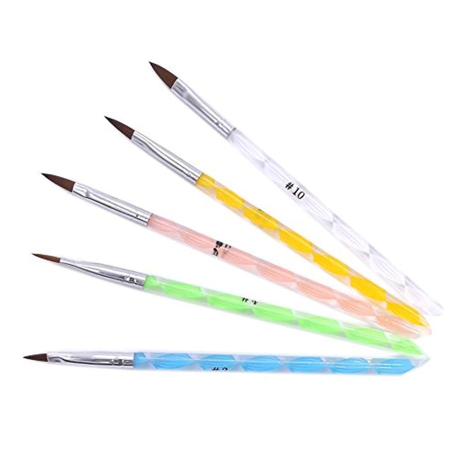 狐リラックスした民主党(ウォームガール)Warm Girl ネイルアート アクリル用ブラシ ドットペン 5本セット ネイルデザイン 人気なセット