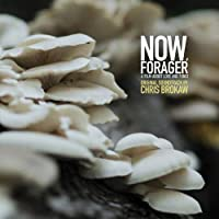 Ost: Now, Forager [12 inch Analog]