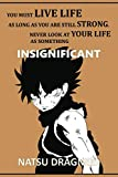 """You must live life as long as you are still strong. Never look at your life as something insignificant: Anime Lover """"Motivation"""" Notebook, 120 Squared Pages, 6 x 9, Gift, School&Office, Fairy Tail, Natsu Dragneel"""