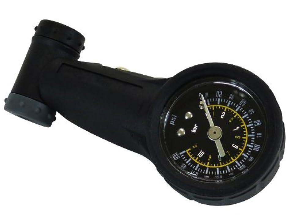 任意補償たとえRuler(ルーラー) タイヤゲージ ツインバルブ ブラック GG-05
