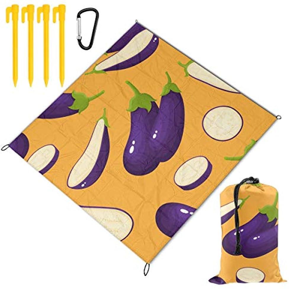 ハンマーヒューズ保守可能夏の野菜 ナス 折り畳めるピクニックマット 防水防湿パッド 公園マット キャンプマット 超軽くて便利な携帯用防水ピクニックマット 145x150cm