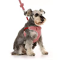 ペットリーシュベストスタイル小型犬に適した快適な犬の歩行ロープ (サイズ さいず : C)