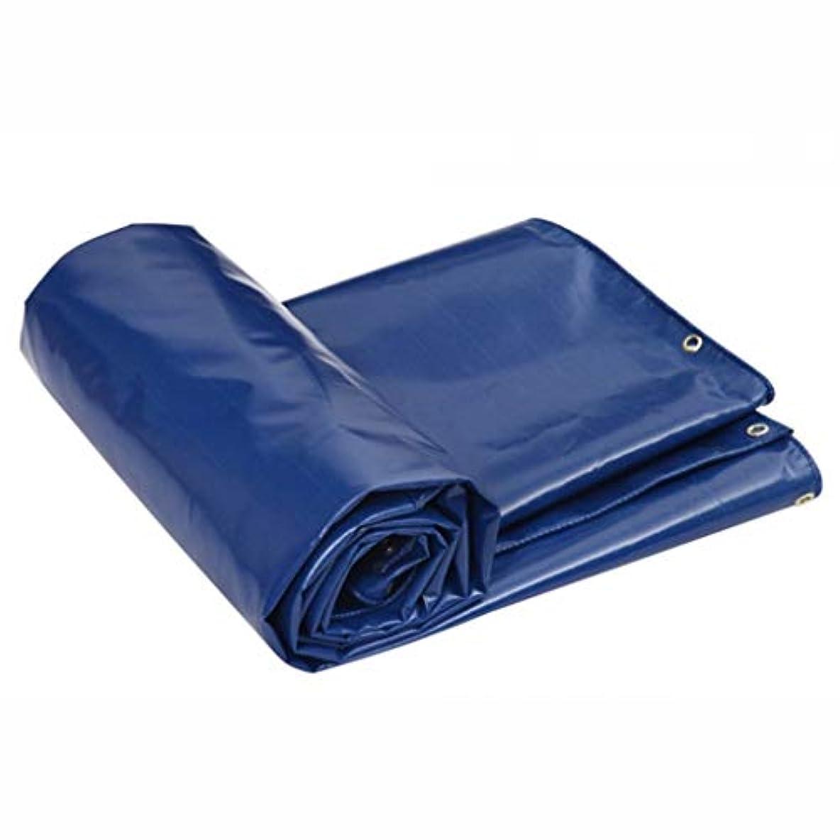 内陸相談後退する防水シート日焼け止め防水バイザー雨布キャノピー布車トラック FENGMIMG (色 : 青, サイズ さいず : 4*6m)