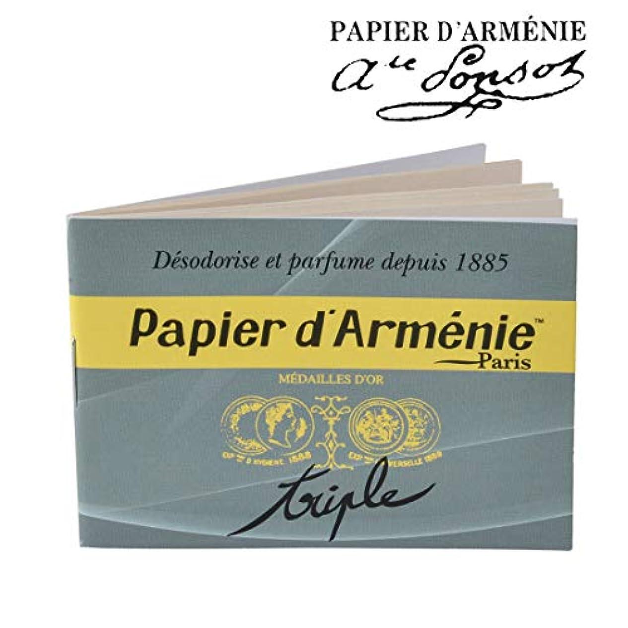 実験をするリーガンセッティングpapier d armenie パピエダルメニイ トリプル
