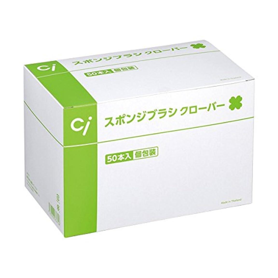夫婦コウモリおとうさんCi スポンジブラシ クローバー(50本入)