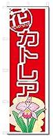 のぼり のぼり旗 カトレア (W600×H1800)