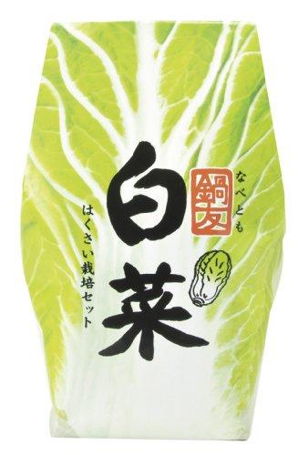 鍋友 白菜 GD-440