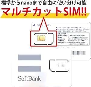 softbank 大容量50GB prepaid DATA通信 SIM (50GB/月プラン, 12ケ月・SIMのみ)
