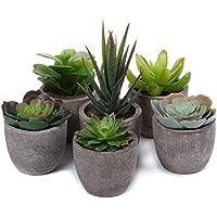 T4U 人工観葉植物 造花 フェイクグリーン お世話のいらない 癒しのグリーン インテリア プレゼント プラスチック製 6点セット