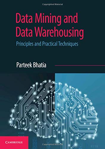 Download Data Mining and Data Warehousing: Principles and Practical Techniques 1108727743