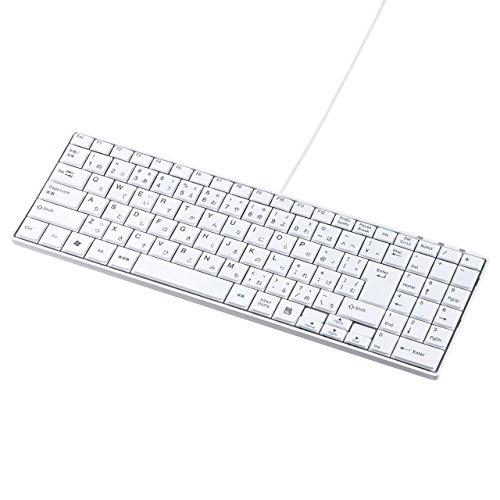 サンワサプライ USBスリムキーボード(テンキー付き) ホワイト SKB-SL17WN