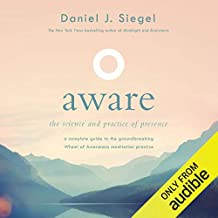 Aware: The Science and Practice of Presence - a Complete Guide to the Groundbreaking Wheel of Awareness Meditation Practice