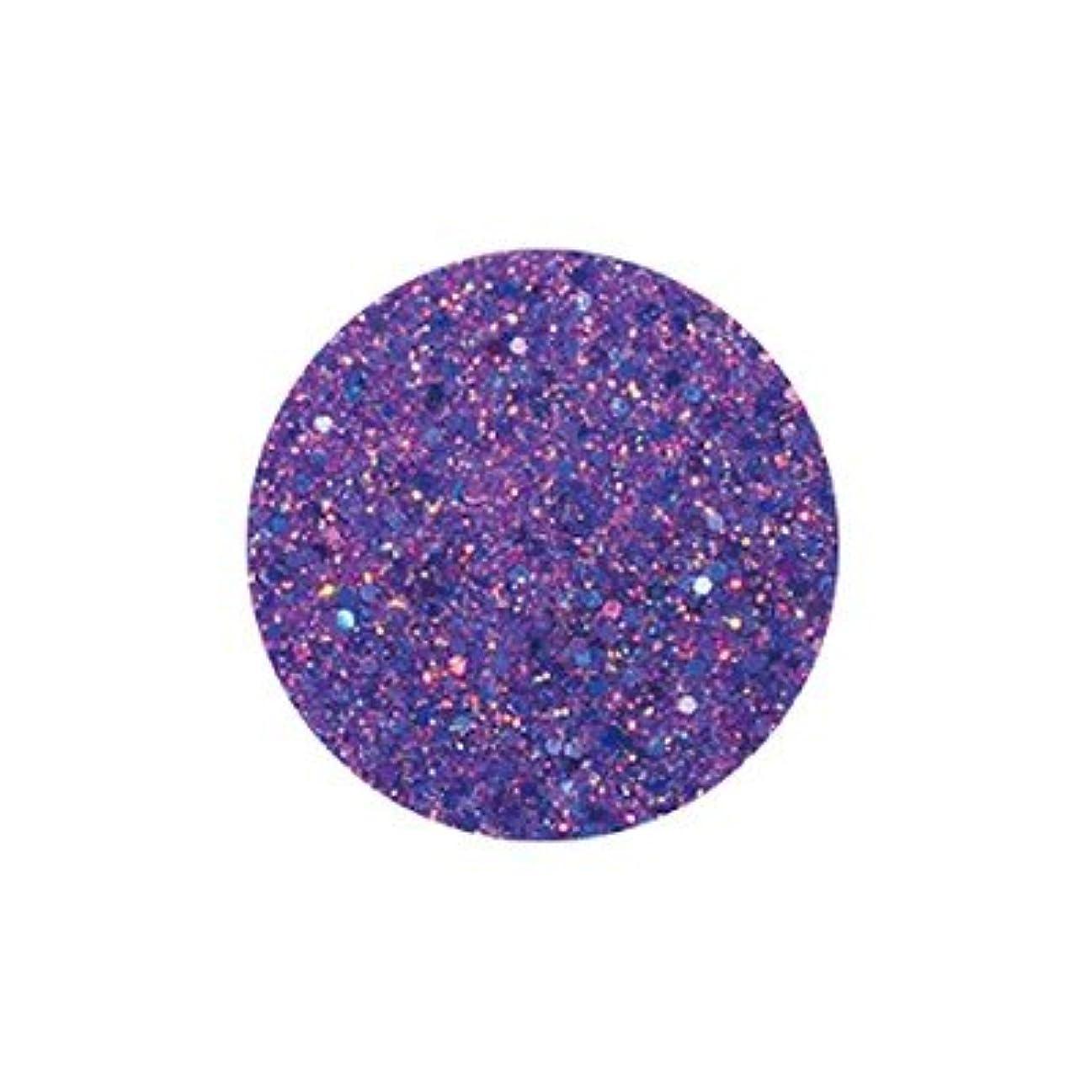 労働者フレキシブル抜本的なFANTASY NAIL ダイヤモンドコレクション 3g 4261XS カラーパウダー アート材