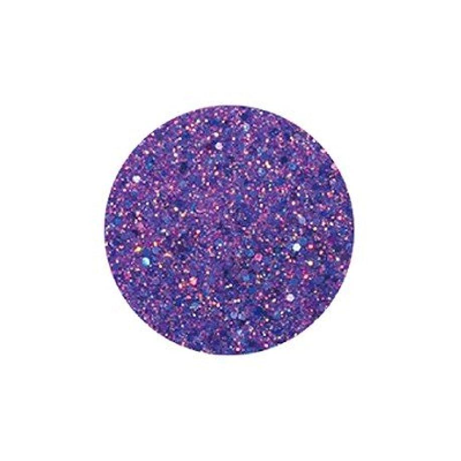 スキニー祝福するトレッドFANTASY NAIL ダイヤモンドコレクション 3g 4261XS カラーパウダー アート材