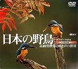 シンフォレストDVD 日本の野鳥 高画質映像と鳴き声の世界 Wild bird's Singing 画像