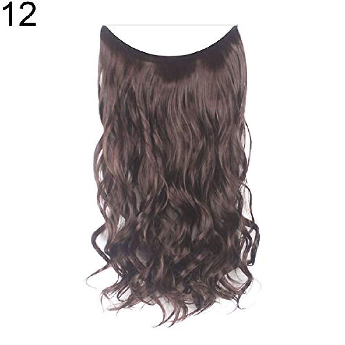 良性ディスクランダムslQinjiansav女性ウィッグ収納コンテナ22インチ女性ロングストレート/カーリーワイヤーヘッドバンドウィッグ目に見えない髪の延長